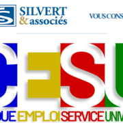 CESU expert comptable silvert